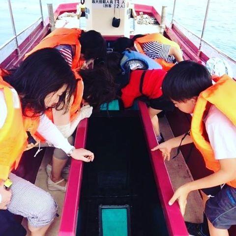 こんにちは!青の洞窟グラスボートです..グラスボートの中はこんな感じになってます!4月終わり、5月前半にはもしかしたら野生のイルカやトドに会えるかも(^O^).#小樽#hokkaido#otaru#青の洞窟グラスボート#グラスボート#青の洞窟#祝津#観光#祝津マリーナ#イルカ#トド#japan#sea#海鮮丼#祝津マリーナ#マリーナ食堂