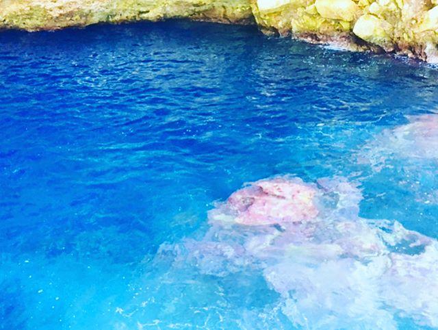 青の洞窟グラスボートです.この写真は全てサイパンの青の洞窟です!.オフシーズンの時にサイパンにも青の洞窟があるとゆうことで....行ってきました️!.小樽も綺麗ですがサイパンの洞窟もとっても綺麗でした!!基本船で入るのではなくシュノーケルとダイビングで洞窟探検するとゆう感じでした(*^_^*)身近に青が感じられてとっても綺麗でした.動画は見づらいですがダイバーさんのバブリングや下からのライトでさらに水面が青く光ってキラキラしてました.自然が作り出す神秘は凄いですね️.海外は...とゆう方も是非小樽の青の洞窟も負けてないので体験して下さいね️️.ご予約、ご質問、お問い合わせ090-7621-1092(8:00〜17:30).直接お電話にてご予約のお客様インスタ、フェイスブック見た!の合言葉でお一人様500引き.是非是非お待ちしております️