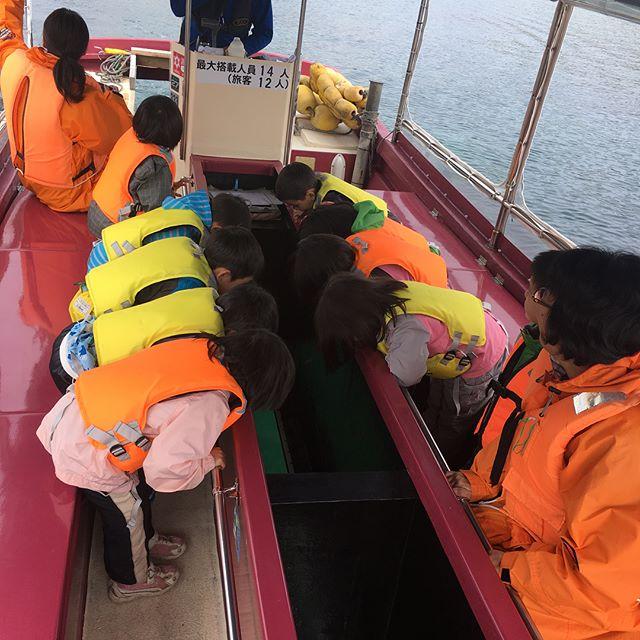 こんにちは︎!青の洞窟グラスボートです!.この前とっても可愛らしいお客様がいらっしゃって下さいました.保育園のお子さん達の貸し切りトド岩ツアーです!.洞窟までは少し時間がかかってしまうので近くのトド岩まで海底を眺めて魚を探したりカモメに餌をあげたり30分間とーっても楽しんでくれていました️.この日は偶然イルカも居てタイミングばっちりでした..このように、幼稚園、保育園の行事などで貸し切りツアーも可能です♀️.船に乗った事がないお子さんも沢山居ると思うので是非この小樽の海の海底を覗きながら初めての体験をして楽しんで頂きたいです..直接お電話にてお問い合わせ下さい!!️.トップページに電話番号が乗ってますのでご覧ください..#小樽#青の洞窟#青の洞窟グラスボート#グラスボート#祝津#クルージング#保育園#行事#食堂#海鮮丼#ツアー